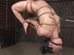 flat chested muscle leap babe gets hogtied