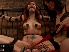 Striking BDSM session with a lusty gong Bobbi Starr and her following Brooklyn